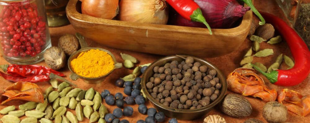 """Artikel: """"Die TCM-Ernährung: Kochideen für alle Jahreszeiten"""""""